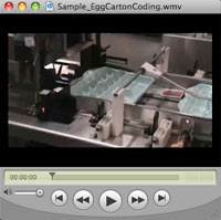 Sample - Egg Carton Coding Video